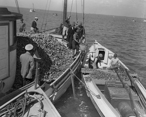 watermen_and_oyster_industry_october_1940_2773_002